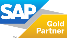 SAP Business One Annual Maintenance